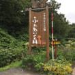 健康回復村キャンプ場(^^)