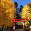 締め詣巡り 愛宕神社