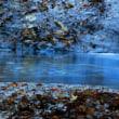 11月14日 渦巻く渓流