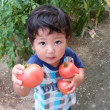 トマト、おいしいよ