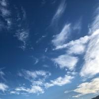 天を見上げ