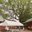 2017熊野那智大社 奉納演奏 前日。