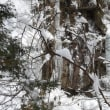 南木曽 田立の滝 氷瀑