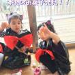 ☆・。どーなつ、くっきー、ぱふぇぐみ(3・4・5歳児)10月の様子。・☆