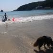 伊豆・下田で海遊び