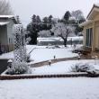 またまた、雪
