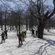 4/21早春のスノートレッキング「ヒミツの巨木と沼めぐり」開催しました。