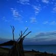 朝方の月と東シナ海
