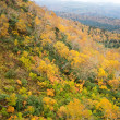北海道上川郡美瑛町の秋 風景写真 / Sony α7RⅡ