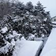 18-02-17 雪下ろし