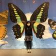 MOVE生きものになれる展・日本科学未来館にいってきました~
