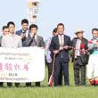 5/20 東京競馬:11R・優駿牝馬(GⅠ) (第79回オークス)