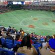 プロ野球観戦
