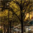 パリ・秋雨の夜
