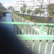 180303吞川問題の視角(1)