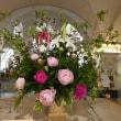恒例のホテル入口の素敵な花 (2018年5月10日撮影)