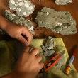 化石クリーニング〜瑞浪層群の化石〜