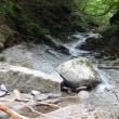 西丹沢 中川川 モロクボ沢 滑棚沢(2017.8.13)