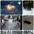 やっと雪国
