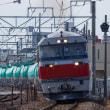 JR貨物 DF200-216 5282レ 関西本線(四日市-桑名)