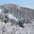 樹氷の白兀山
