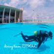 沖縄ダイビングCOOLニュース 2018年 4月24日
