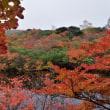 那須 ひょうたん池の紅葉