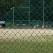 愛知大学野球連盟