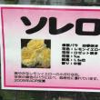 京成バラ園セミナーは夏剪定について、元気なつるバラ🌹