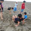 今年も砂浜、やりきりました