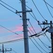 1/17 これも今朝 多少のピンクの雲はあった