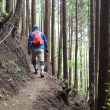 夏季休暇の最終日は金剛山で