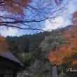箱根の紅葉(3)