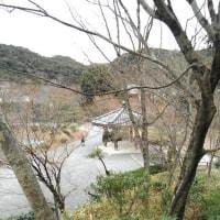 宇治市~中村藤吉・ユニチカ・平等院
