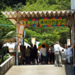 2年ぶりの唐川びわ祭り盛況でした