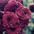 詩『雨  音』