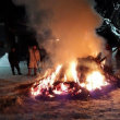 みちのくの冬2018 : 小正月の行事(さいと焼きと団子の木飾り)