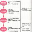 古事記や日本書紀の宗教意識を探る