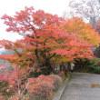 「座禅」と「ひよっこ舞台」と「大子永源寺の紅葉」