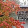和歌山城(4)紅葉渓庭園