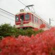 9月20日の神戸電鉄 雨ニモマケズ