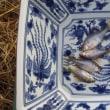 師走の北浦水系でのタナゴ釣りは予想通り厳しい結果となりました。!!(12月の月一タナゴチェック!!)