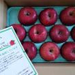 信州伊那より今冬も真っ赤なリンゴが到着しました!