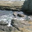 狙われる私たちの郷土 ~美しきかな水の国~ 4