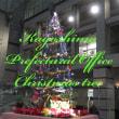 鹿児島県庁のクリスマスツリー・・・鹿児島の風景