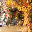 神楽の分布と伝承のかたち/美郷町東郷「坪谷神楽」にて①[宮崎神楽探訪の旅へ'17-18<6>]