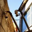 謎の狭小住宅