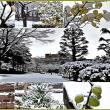 青い森公園の雪景色