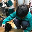 黒猫ジジィです 猫だって風邪をひくにゃ