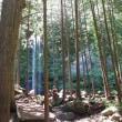 金時山と夕日の滝